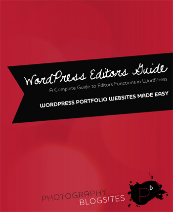 wordpress guide image New PDF Guides Make Learning to use WordPress and our BlogSites Easier.