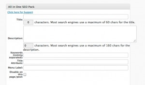 All in one SEO 300x176 Search Engine Optimization